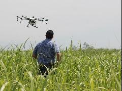 Setor da agricultura tem investido e proporcionado cada vez mais avanços tecnológicos