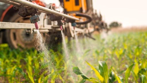Exportação do agronegócio cresce 20,9% em 2021