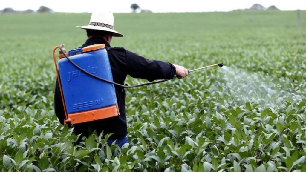 Decreto federal estabalece novas regras para registro e pesquisa de agrotóxicos