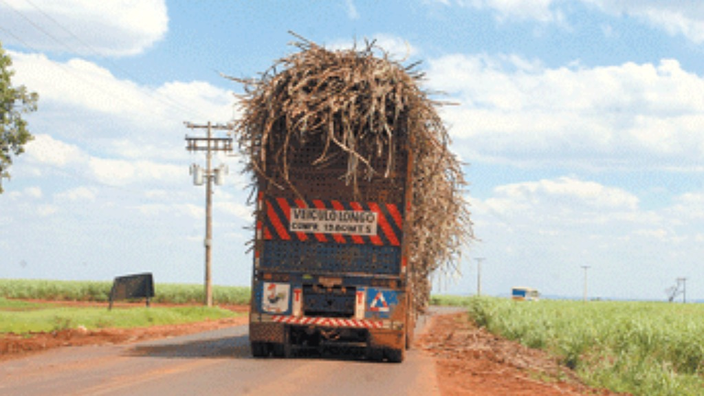 MPT instaura inquéritos contra usinas de São Paulo para investigar o peso transportados por caminhões de cana
