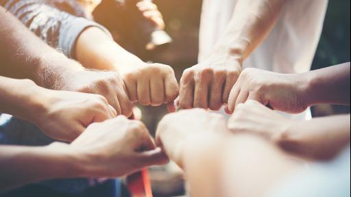 Conheça o efeito modificador das cooperativas dentro da própria empresa e até na comunidade