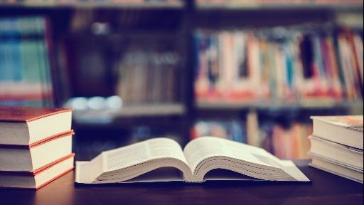 Educação, formação e informação: fique por dentro das práticas que norteiam as cooperativas