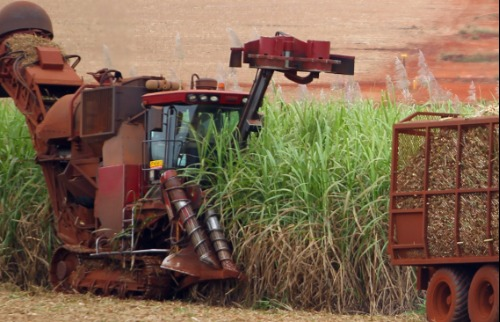 Expectativas sobre a expansão da produção e o abastecimento dos mercados de açúcar e etanol