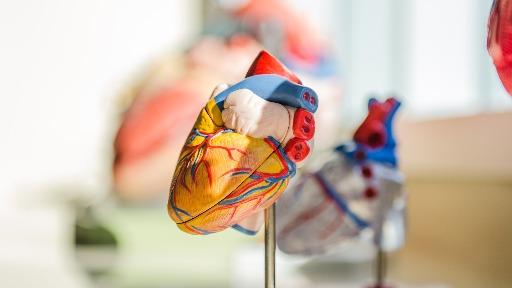 Entenda o que é a Síndrome do Coração Partido