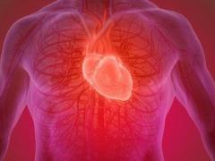Conheça hábitos que ajudam a combater doenças graves no coração
