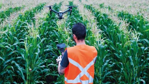 Estudo de multinacional brasileira apontou que o agronegócio deve ampliar o uso de drones em até 69%