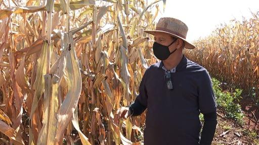 Reflexão sobre o modo como os agricultores devem lidar com a estiagem e o controle da água em meio à crise hídrica