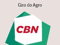 Embrapa Pecuária Sudeste em São Carlos irá operar com usina fotovoltaica