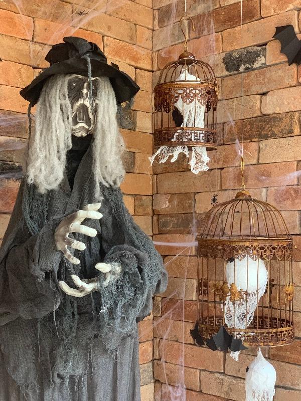 Halloween: o que o Dia das Bruxas tem a ver com a língua portuguesa?