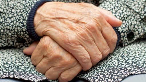 idosos pensão filhos - Foto: Divulgação