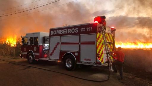 Incêndio em mata em Ribeirão Preto - Foto: Naiana Kennedy/ CBN Ribeirão