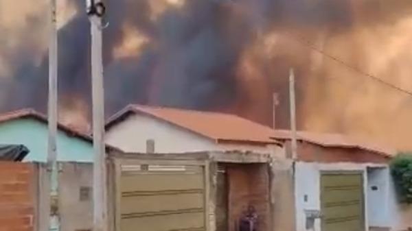 Incêndio consome área de preservação permanente e quase atinge residências em Miguelópolis