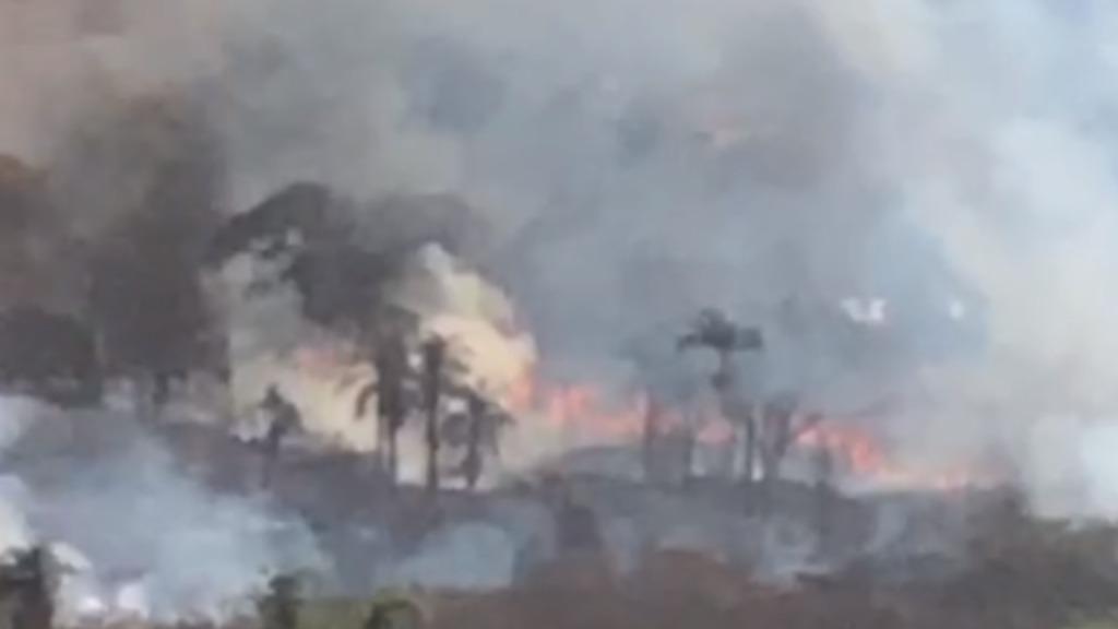 Especialista aponta que 99% das queimadas são provocadas por ações humanas