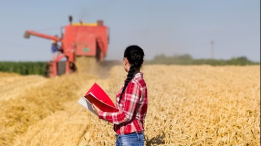Crescimento do PIB mostra aquecimento do agro na região