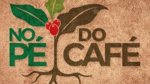 No Pé do Café: ICL América do Sul destaca resultados com a parceria comercial