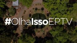 #OlhaIssoEPTV: mande fotos para nós de maneira fácil através das redes sociais