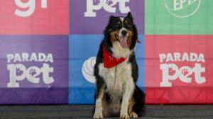 1º Parada Pet Alfenas