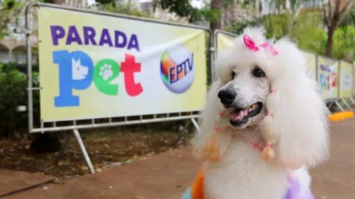 2º Parada Pet Campinas