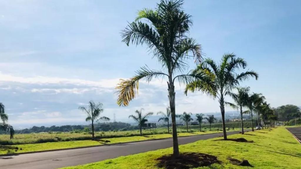 Parque das Oliveiras atrai indústria, comércio e serviços