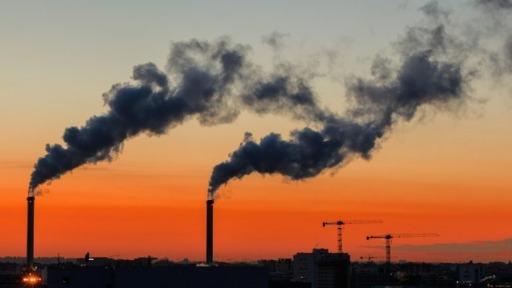 Entenda o que são os créditos e mercado de carbono