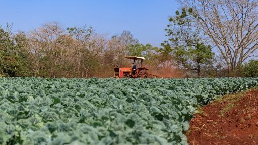 A relação entre a sustentabilidade e a agricultura