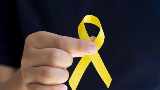 Nesta sexta-feira (10) é celebrado o Dia Mundial de Combate ao Suicídio
